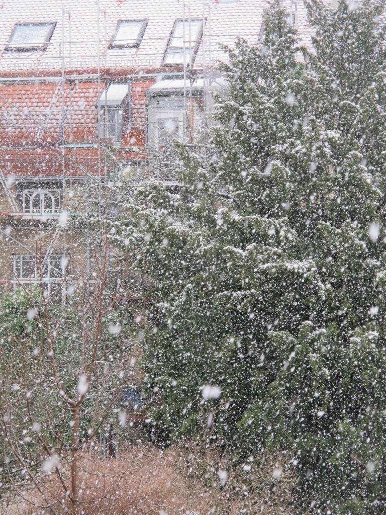 Schnee 16