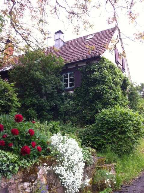 Pfalzhaus